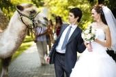 Свадебная мода: Алексей Бочков: «То, что увижу я – увидят их внуки!»
